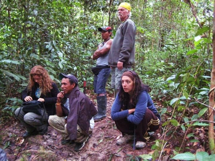 Group in the Jungle