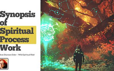 Part Four: Synopsis of Spiritual Process Work