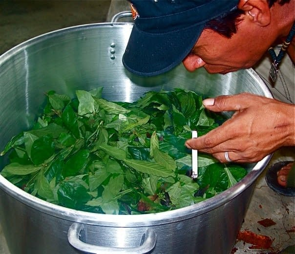 Luco Blowing Tobacco Over Ayahuasca Medicine Before Cooking