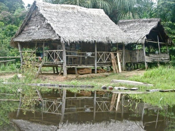 Village Houses Along the River in the Peruvian Amazon
